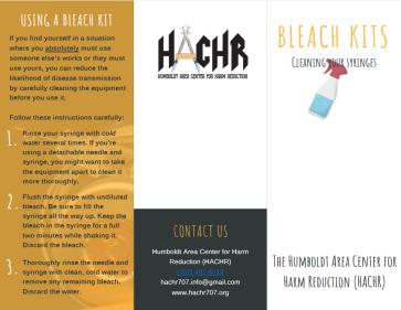 bleach1